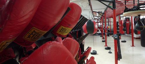 Oldham Boxing